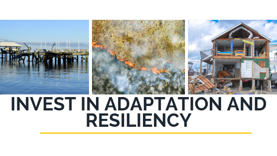 Invest in Adaptation and Resiliency