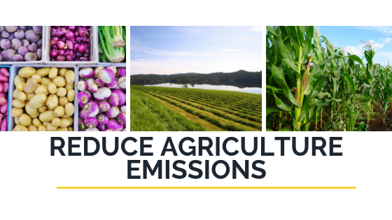 Reduce Agriculture Emissions